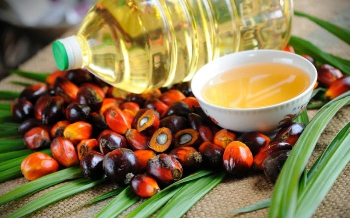 Вместо этого масла лучше использовать более экологически чистые альтернативы. /Фото: storage1.censor.net
