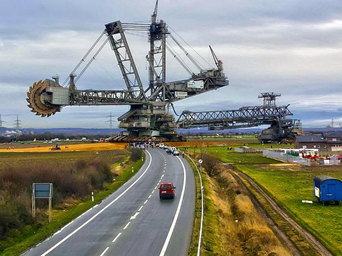 Размеры впечатляют, как и способности. /Фото: hsto.org