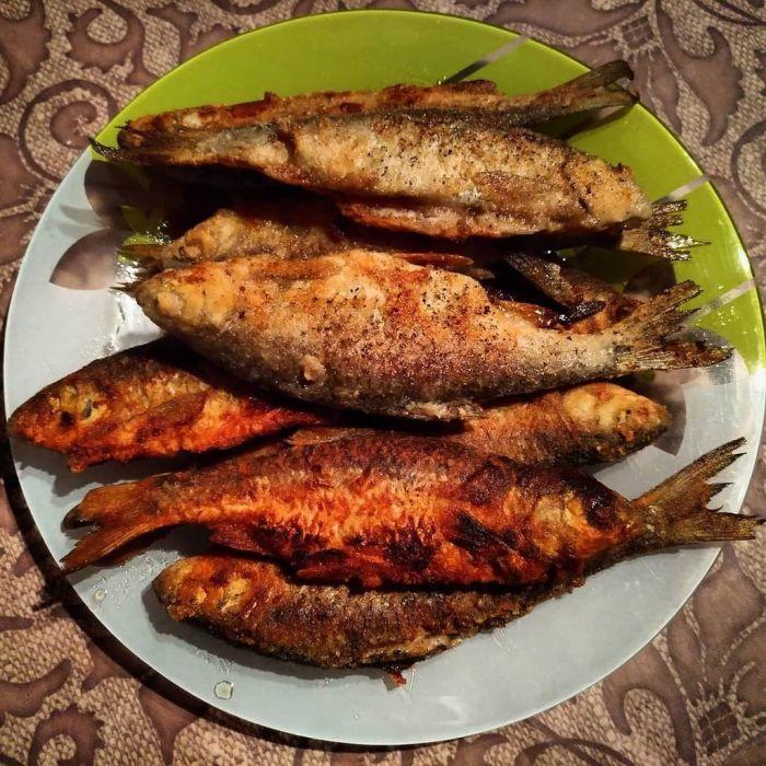 Популярное блюдо в Астраханской области. /Фото: pbs.twimg.com