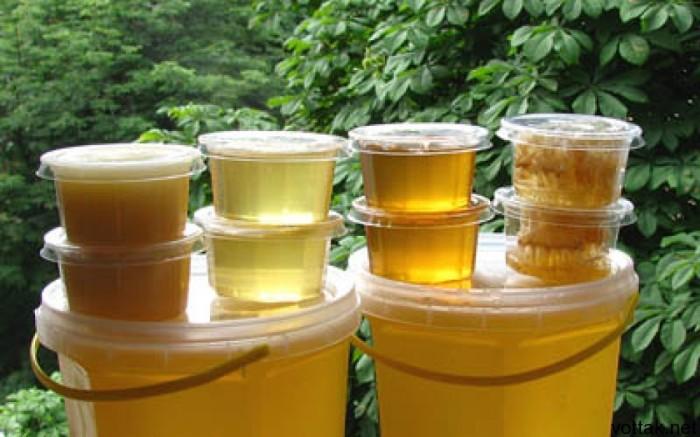 Растения скажут спасибо, если подкормить их медовым настоем. /Фото: vottak.net