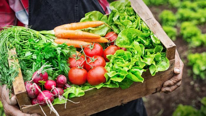 Вкус овощей зависит в первую очередь от сорта и только потом – от агротехники. /Фото: innovationnewsnetwork.com