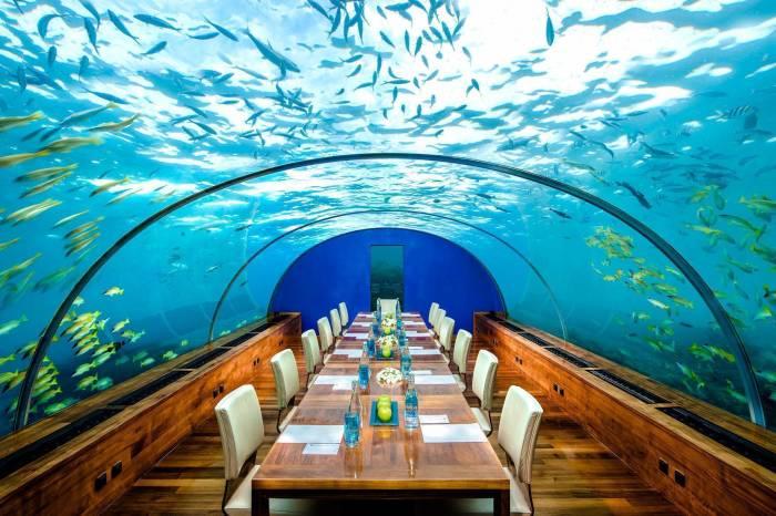 Подводный мир вокруг столика оставляет незабываемые впечатления. /Фото: travelboutique.nl