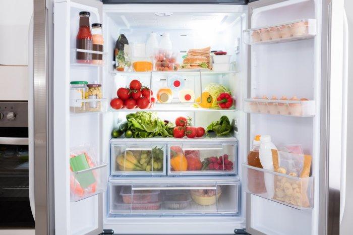 Благодаря холодильникам мы можем хранить продукты и есть мороженое, когда захотим. /Фото: funzone.am