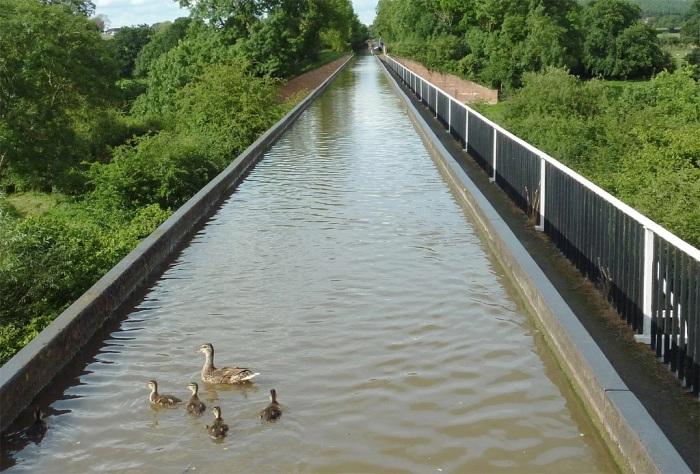 Дорожка для пешеходов на акведуке Эдстон проходит по уровню дна. /Фото: designingbuildings.co.uk