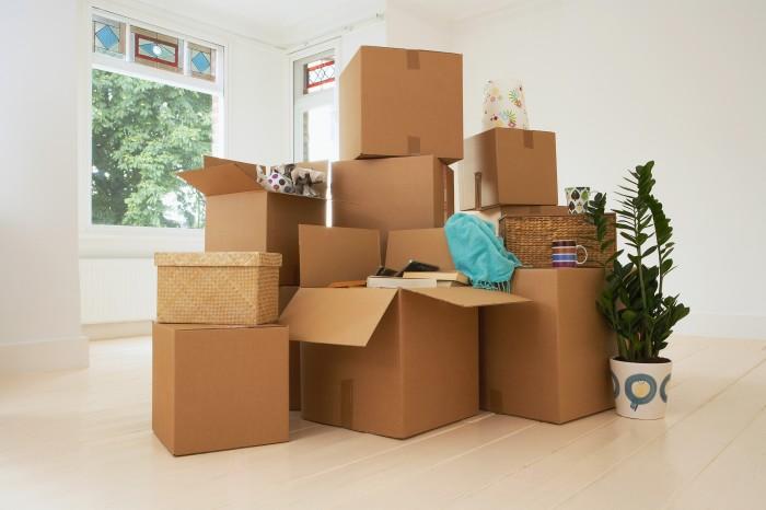 Подушка отлично подходит для упаковки хрупких предметов. /Фото: media2.fdncms.com
