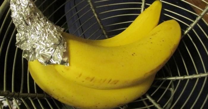Храните бананы правильно. /Фото: telegrafi.com
