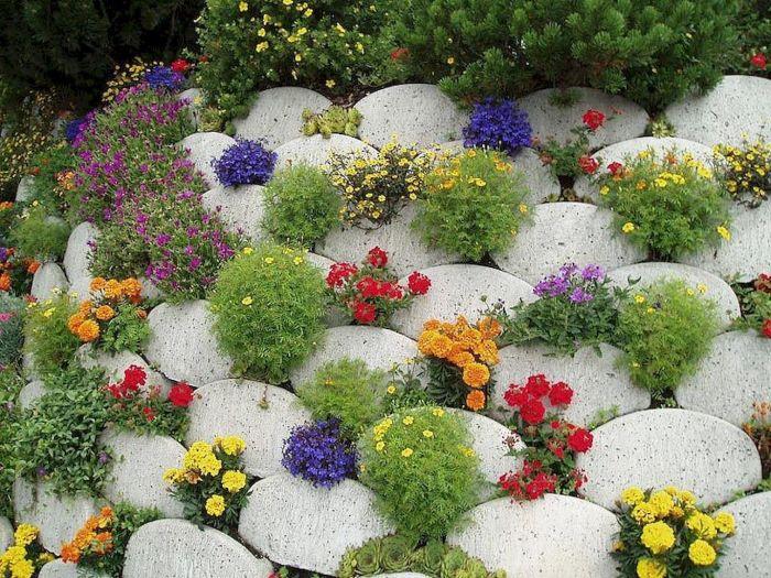 Необычная конструкция и оригинальное цветение. /Фото: i.pinimg.com