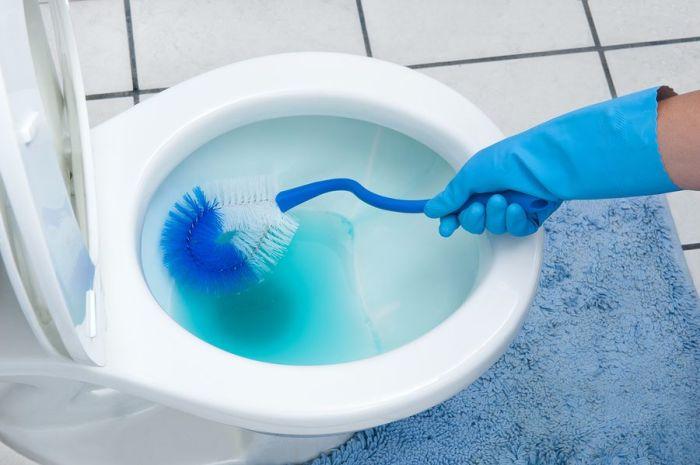 Основной источник неприятного запаха в квартире. /Фото: domashniy.net