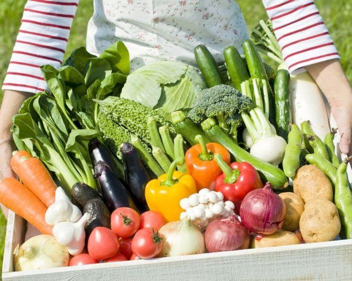 Правильная рассадка обеспечивает богатый урожай. /Фото: mediadb.agro2b.ru