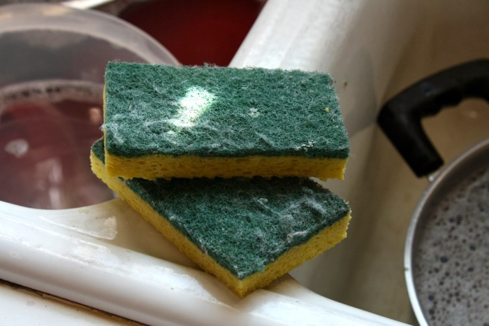 На губке для посуды больше бактерий, чем на сиденье унитаза. /Фото: 4.bp.blogspot.com