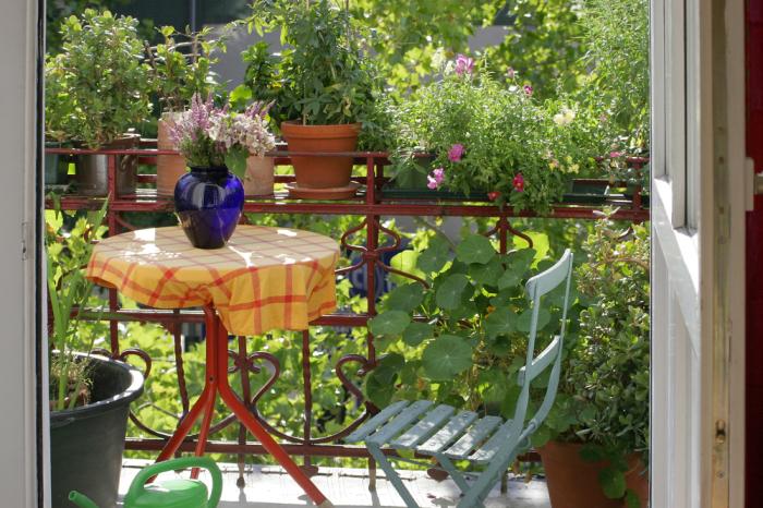 Создание красивой композиции на балконе. /Фото: images-cdn.cian.site