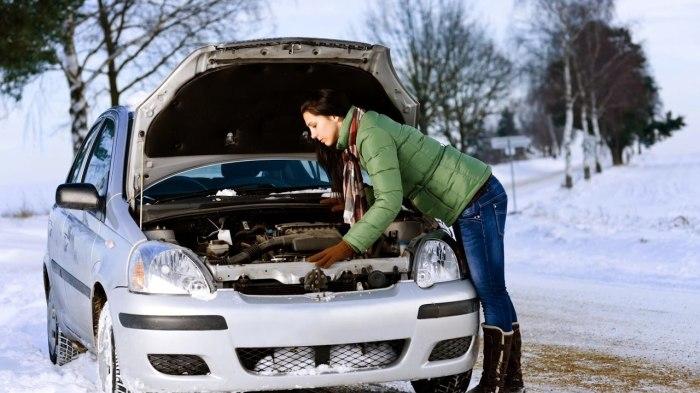 Зимний период является очень сложным для любого автомобиля, особенно для автомобиля с дизельным двигателем.