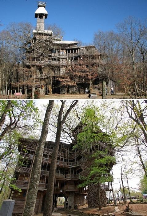 Дом на дереве занесен в Книгу рекордов Гиннесса.