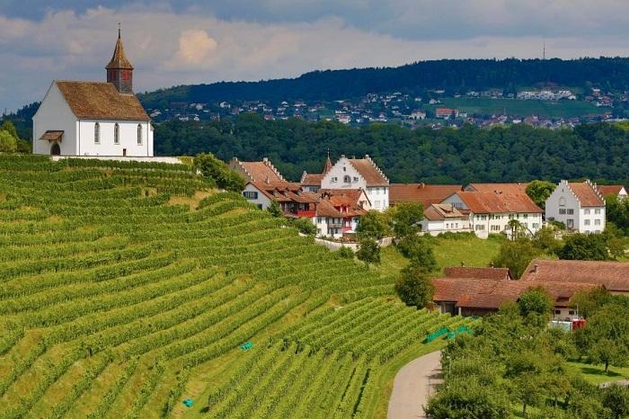 Деревню Рейнау (Rheinau) инициаторы пилотной программы считают «Швейцарией в миниатюре».