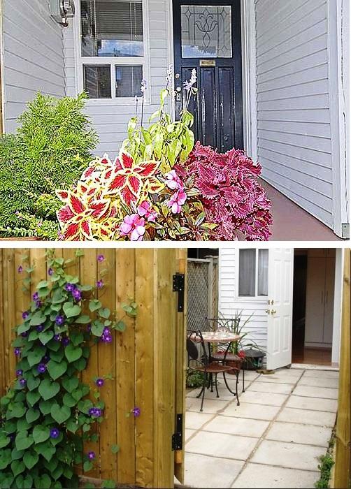 У входа в маленький домик всегда растут цветы.