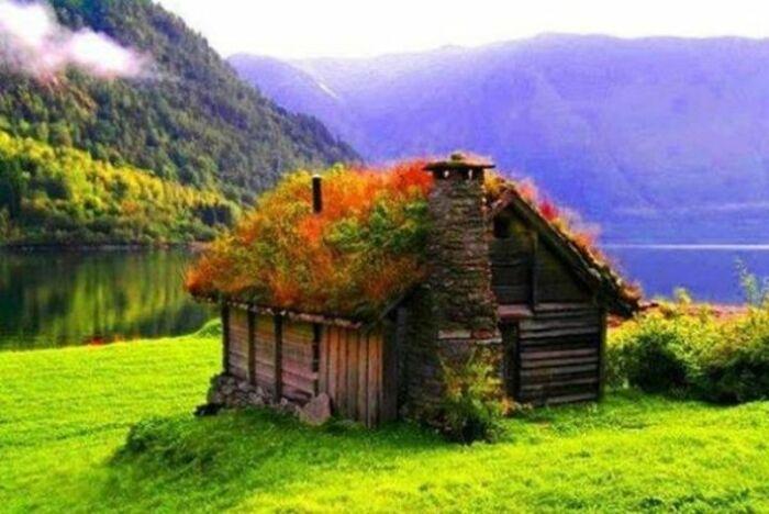 Травяные крыши в странах Северной Европы начали создавать еще в глубокой древности. | Фото: vetrogeneratorsvoimirukami.ru.