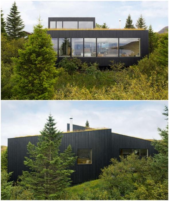 Непроходимые заросли создают особо интимную обстановку (Thingvallavatn House, Исландия).