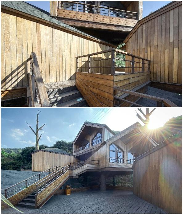 Лабиринты переходов и лестниц создают иллюзию подъема на дерево (Kaiyuan Senbo, Ханчжоу).
