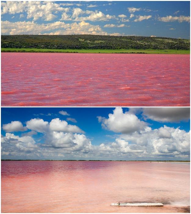 Нереальной красоты пейзаж можно увидеть лишь в летнее время (о. Бурсоль, Россия).