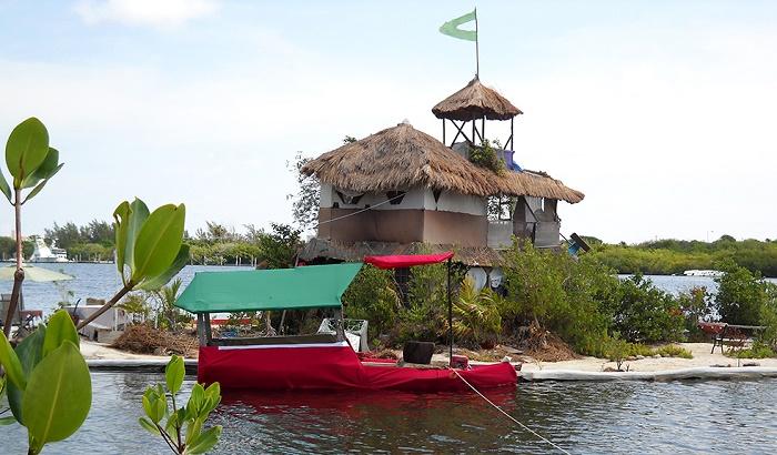 Экологический рай британского художника (Joysxee, Мексика). | Фото: designstack.co.