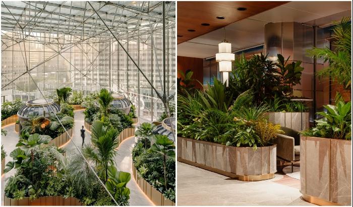 В Citibank Singapore Центр управления капиталом превратили в ботанический сад.