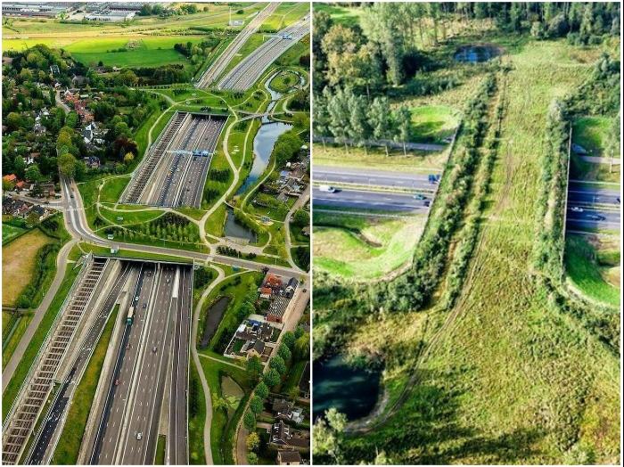 Экодуки стали настоящим украшением скоростных трасс (Норвегия).