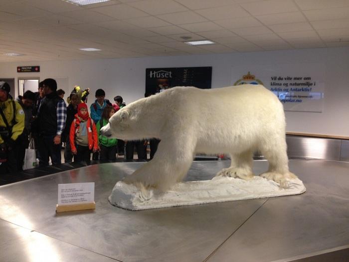 В аэропорту всех путешествующих встречает символ города – белый медведь.