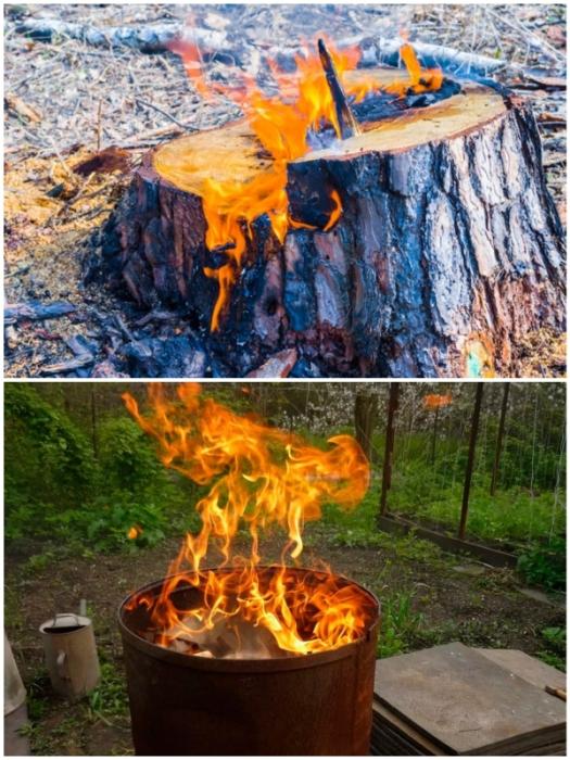 Сжечь старый пень можно с помощью насечек и горючего, а вот над свежим – лучше установить бочку для сжигания мусора.