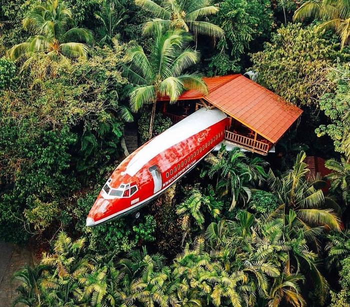 Самолет установили в заповедных джунглях национального парка Мануэля Антонио (Hotel Costa Verde, Коста-Рика). | Фото: pikabu.ru.