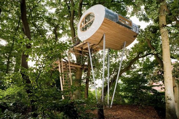 Дом в форме яйца установили на высоте 17 метров между двумя дубами («Луиза», Германия). | Фото: viagginews.com.