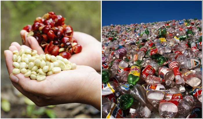 Шелуха от зерен кофе и пластик, заполонивший планету, стали основными элементами для создания уникального композитного материала WPC.