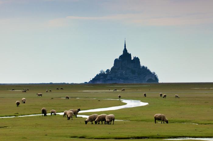 Замок во время отлива (Mont Saint-Michel, Франция).   Фото: ru-travel.livejournal.com.