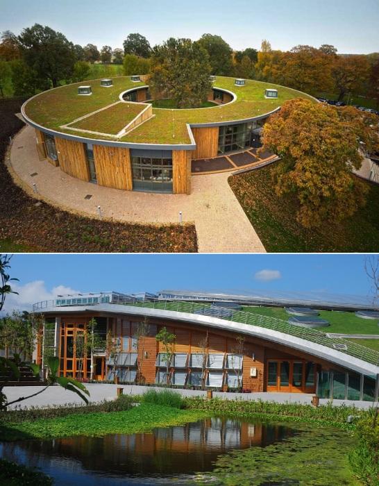 Гармоничное внедрение жилых домов в природную среду.