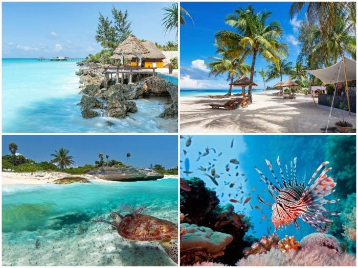 Занзибар – живописный коралловый остров, рай для туристов и ныряльщиков.