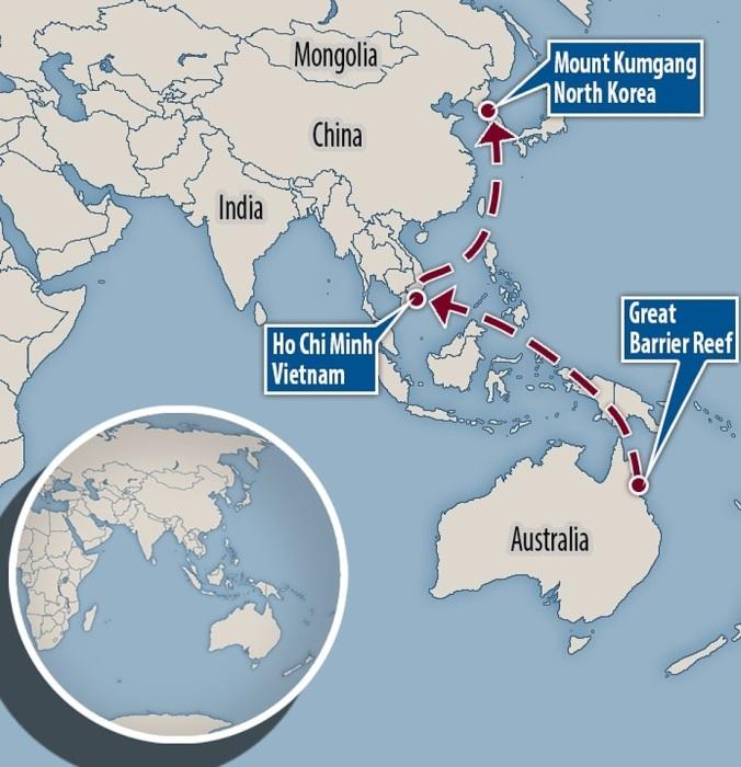 Всего за историю своего существования отель из Большого Барьерного рифа преодолел 14 тыс. км океана. | Фото: dailymail.co.uk.