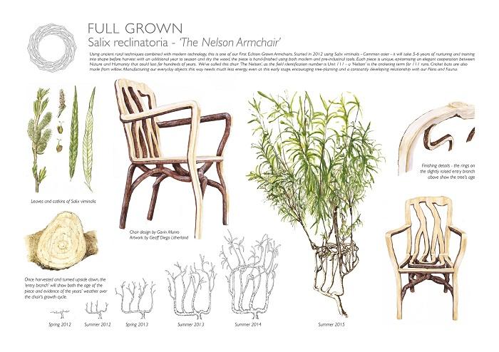 Этапы создания живой мебели.