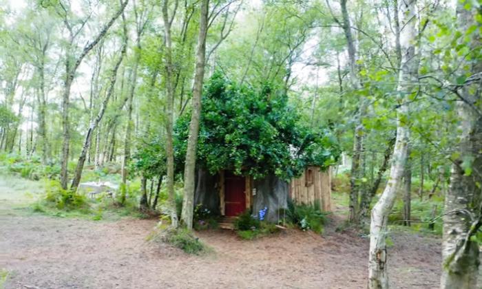 Домик Винни-Пуха готов принимать постояльцев (Эшдаунский лес, Великобритания). | Фото: lemurov.net.