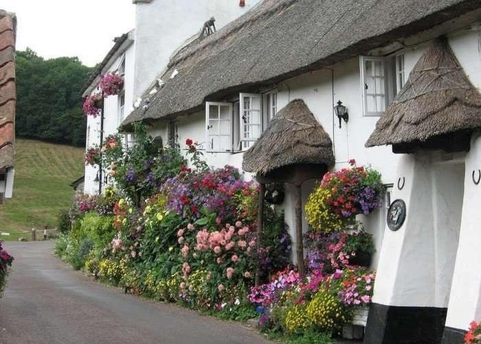 Даже если нет своего двора — не беда, весь фасад дома все равно будет утопать в зелени и цветах!