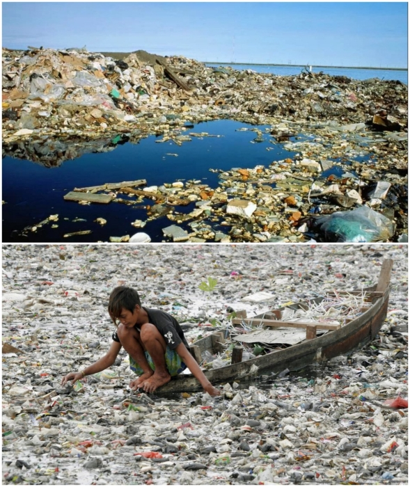 Гигантское мусорное пятно угрожает всей экосистеме Тихого океана.