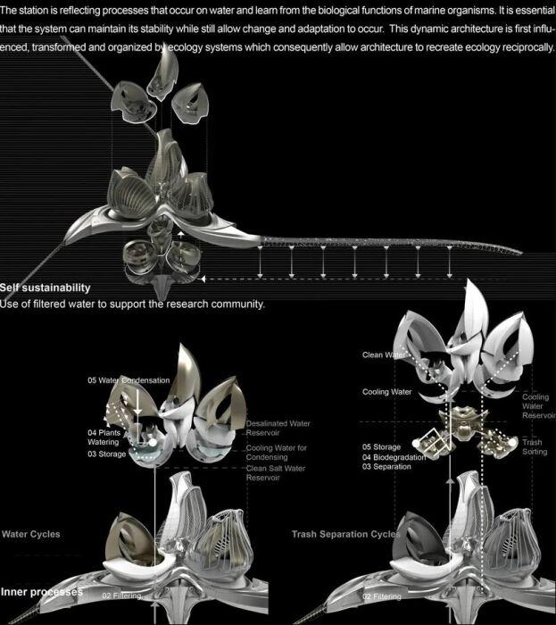 Анка Петракова пытается помочь решить проблемы экологии с помощью нового вида устойчивой архитектуры (концепт 8th Continent). | Фото: autoevolution.com.