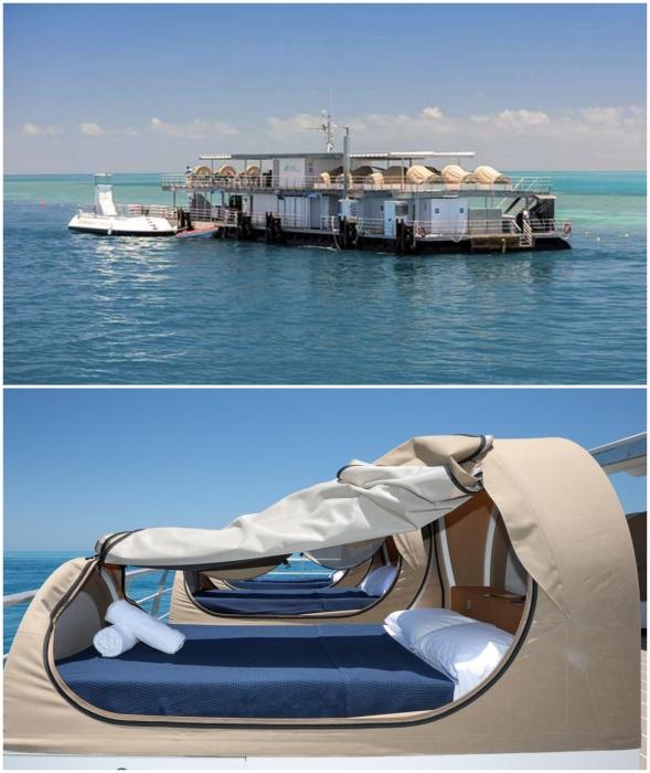 Тем, кому не повезло, придется спать вот в таких капсулах на палубе отеля Reefsuites (Квинсленд, Австралия).