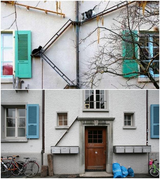 Где живут любители кошек, можно узнать по лестнице на фасаде дома.