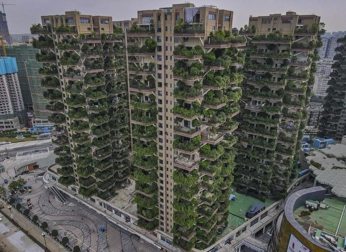 Пустующий жилой комплекс из высоток больше напоминает реалистичные декорации к постапокалиптическому фильму («Qiyi City Forest Garden», Китай). | Фото: dailymail.co.uk.