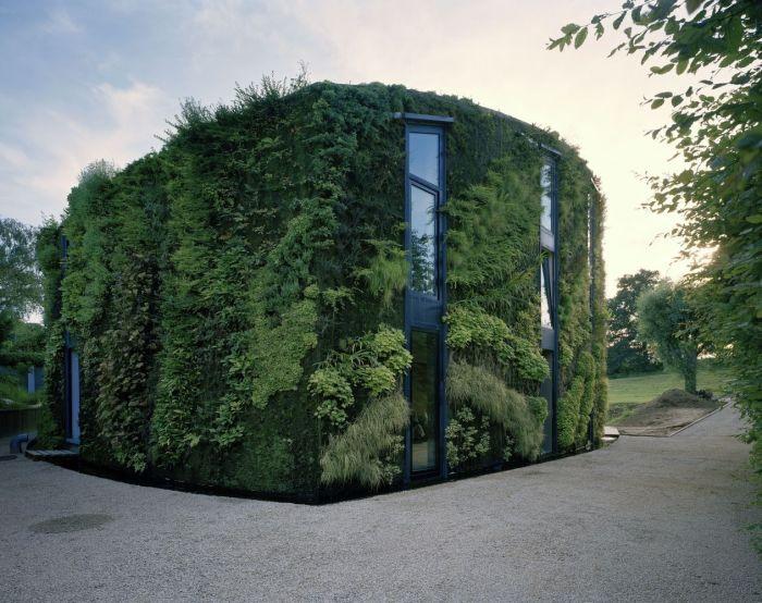 Цветоводы-любители спасаются от жары и любопытных глаз. («Ugly Belgian Houses»). | Фото: archdaily.com.