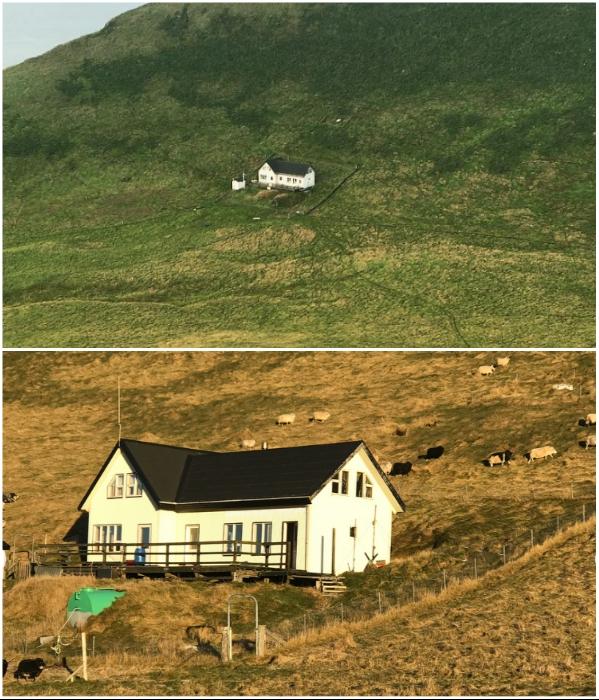 Последняя перестройка одинокого дома на острове была в 2001 г (о. Эдлидаэй, Исландия). | Фото: instagram.com/ © sigurdurkrsigurdsson.