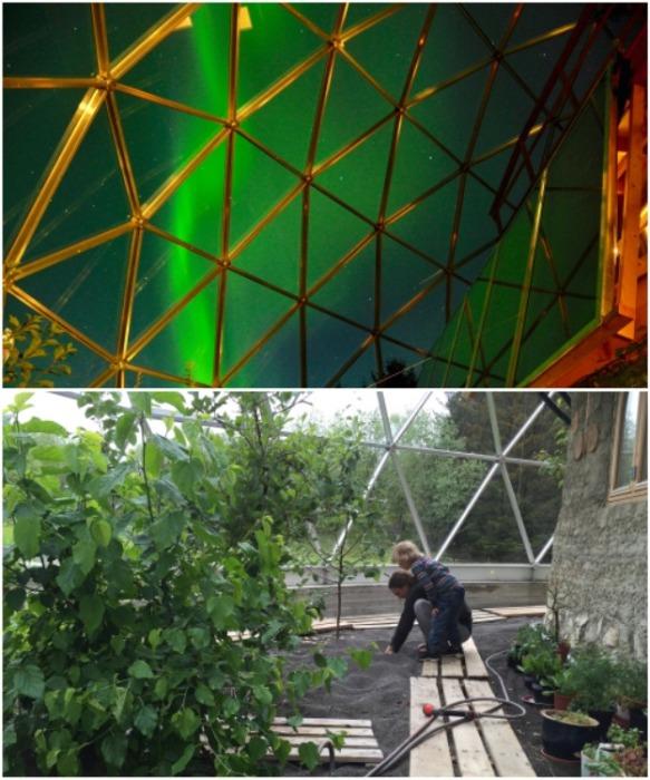 Несмотря на то, что дом находится за Полярным кругом, под куполом можно выращивать теплолюбивые фрукты и овощи (Naturhuset, Норвегия). | Фото: realty.tut.by.