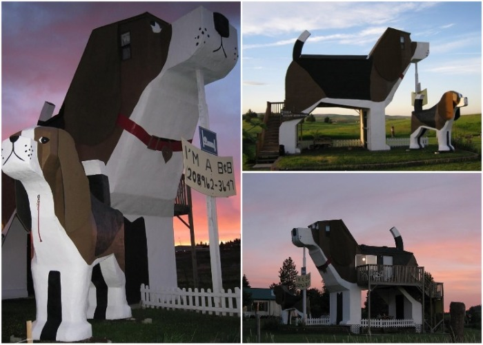 Необычная вилла в форме огромного пса Dog Bark Park расположена в городе Коттонвуд (США). | Фото: uniqhotel.ru.