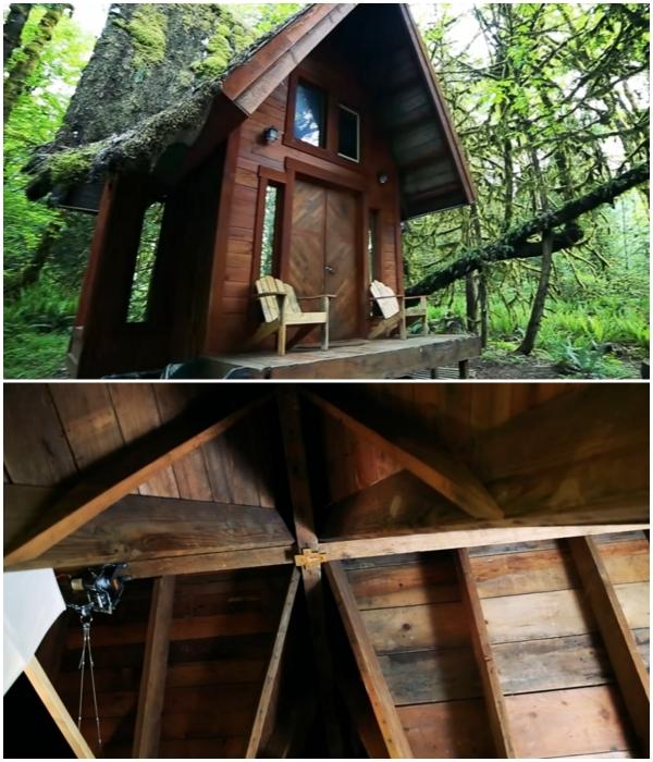 Дом в лесу был построен только из натуральной древесины.   Фото: youtube.com/ © Living Big In A Tiny House.