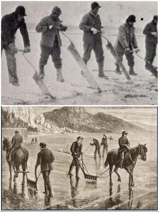 Резка и доставка льда была довольно опасным процессом, во время которого погибали люди и животные. | Фото: author.today.