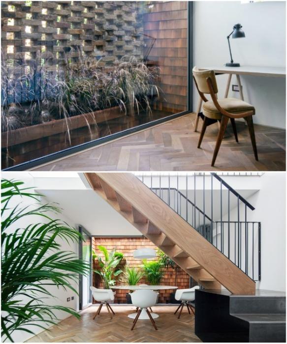 Большое количество живых растений стали дополнительным украшением интерьера уникального дома (Gouse, Лондон). | Фото: yaplakal.com.